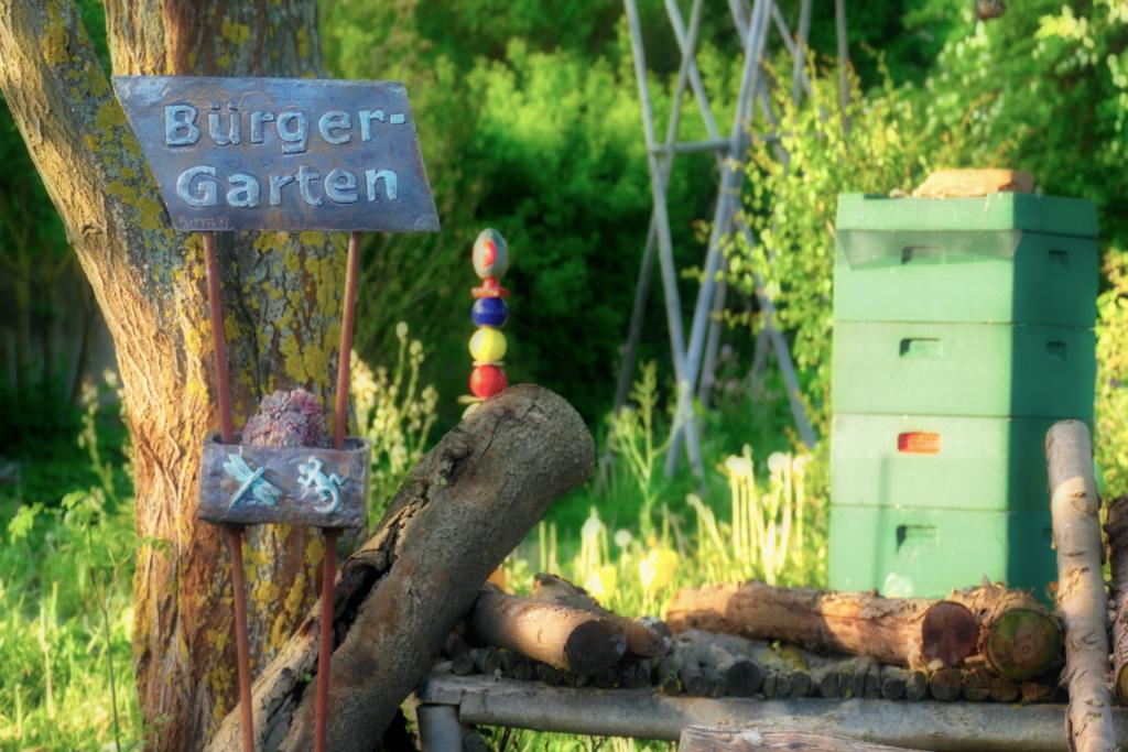 Besuch im Bürgergarten Sibbesse 3